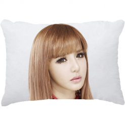 rectangle cushion-1
